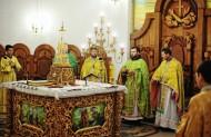 Св. Франциску моли Бога за нас!
