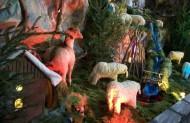 Тваринки теж прийшли вклонитись до Ісуса.